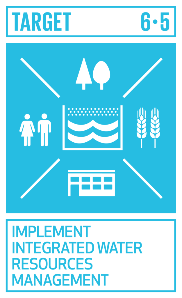 SDGsゴール6 安全な水とトイレを世界中に ターゲット6.5