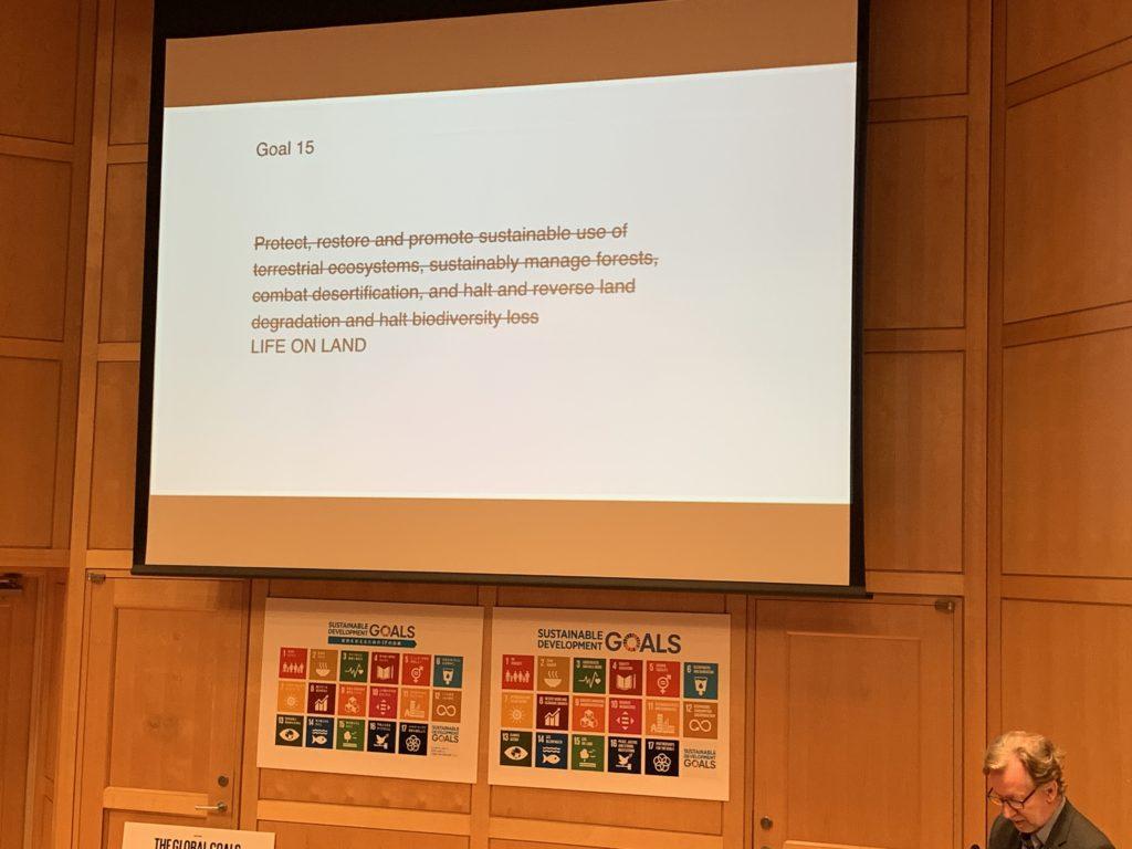 SDGsのロゴデザインやコミュニケーション設計を手がけたヤーコブ・トロールベックさんのプレゼンテーション5