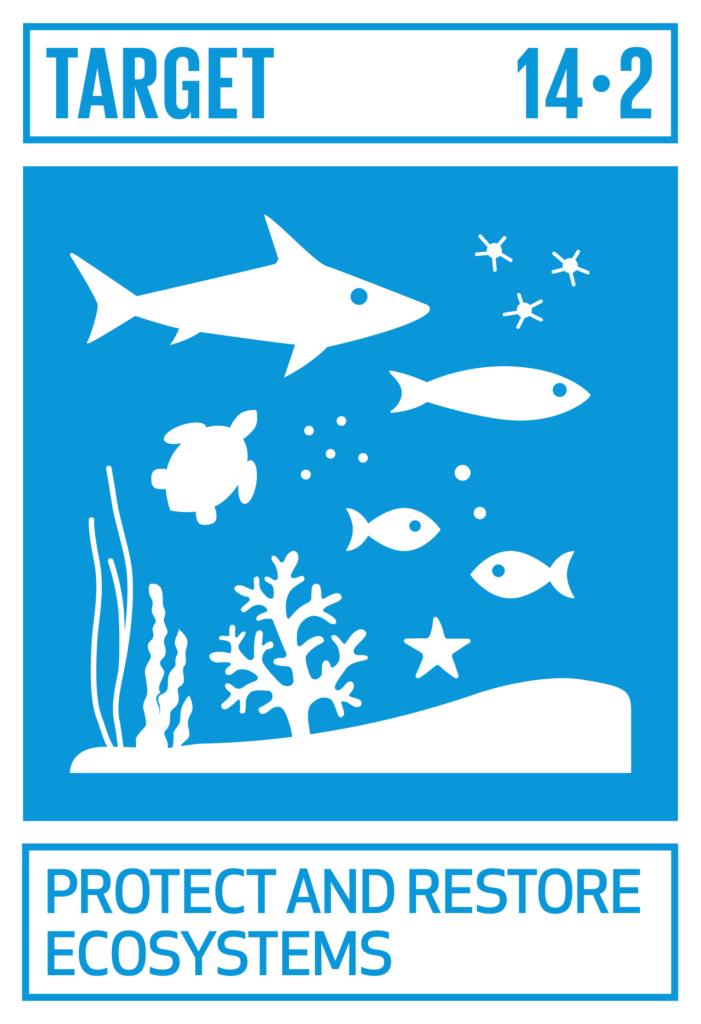 SDGsゴール14 海の豊かさを守ろう ターゲット14.2