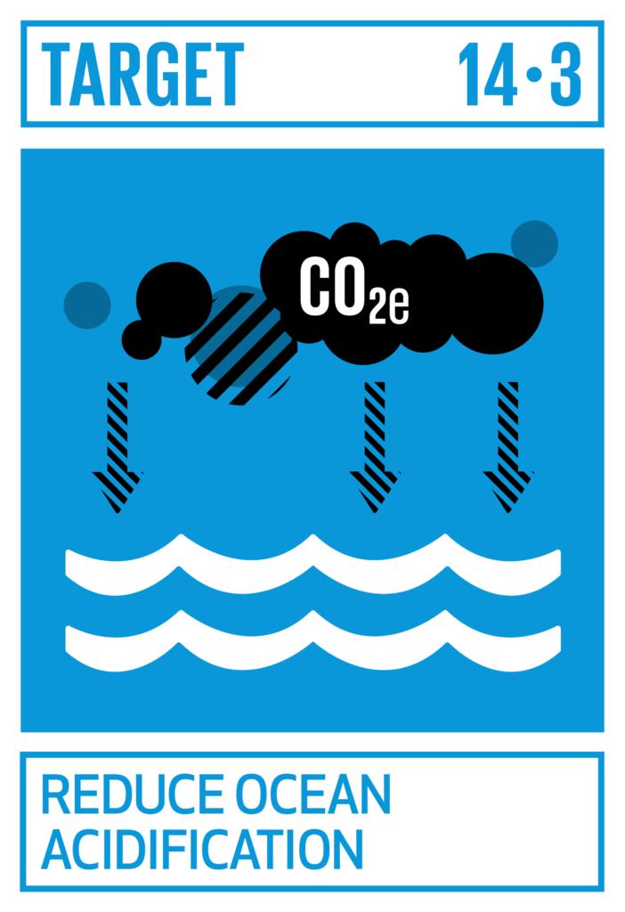 SDGsゴール14 海の豊かさを守ろう ターゲット14.3