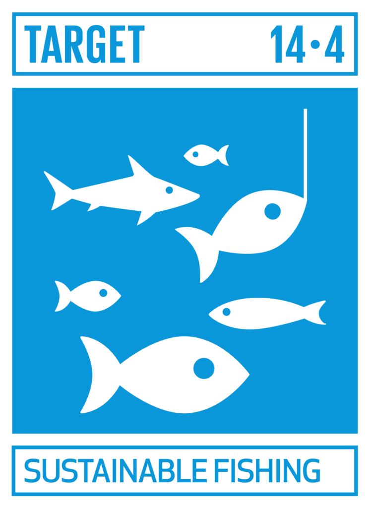SDGsゴール14 海の豊かさを守ろう ターゲット14.4