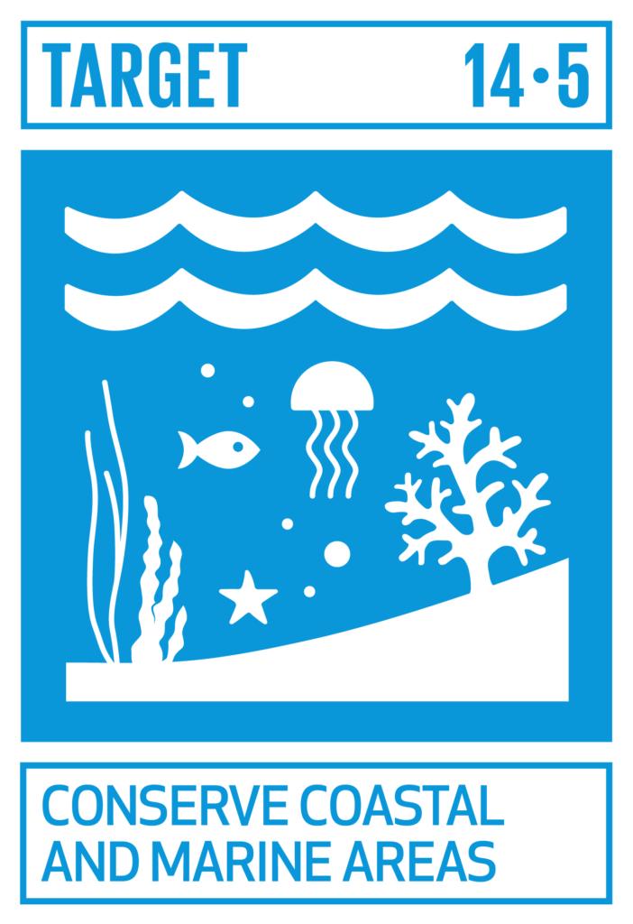 SDGsゴール14 海の豊かさを守ろう ターゲット14.5