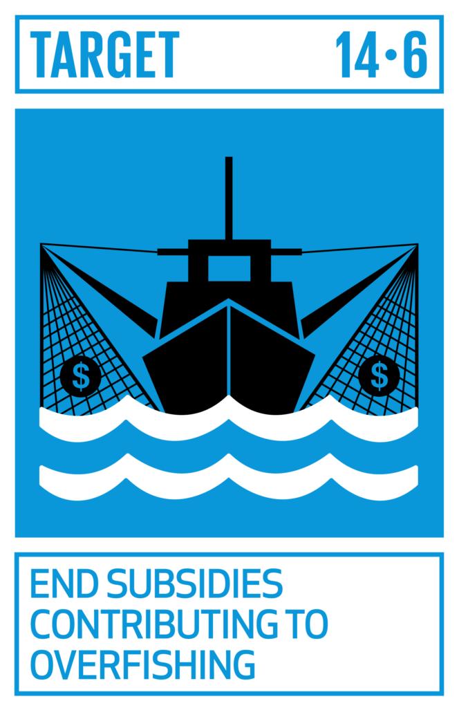 SDGsゴール14 海の豊かさを守ろう ターゲット14.6