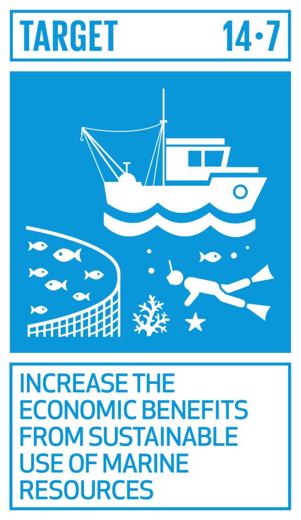 SDGsゴール14 海の豊かさを守ろう ターゲット14.7