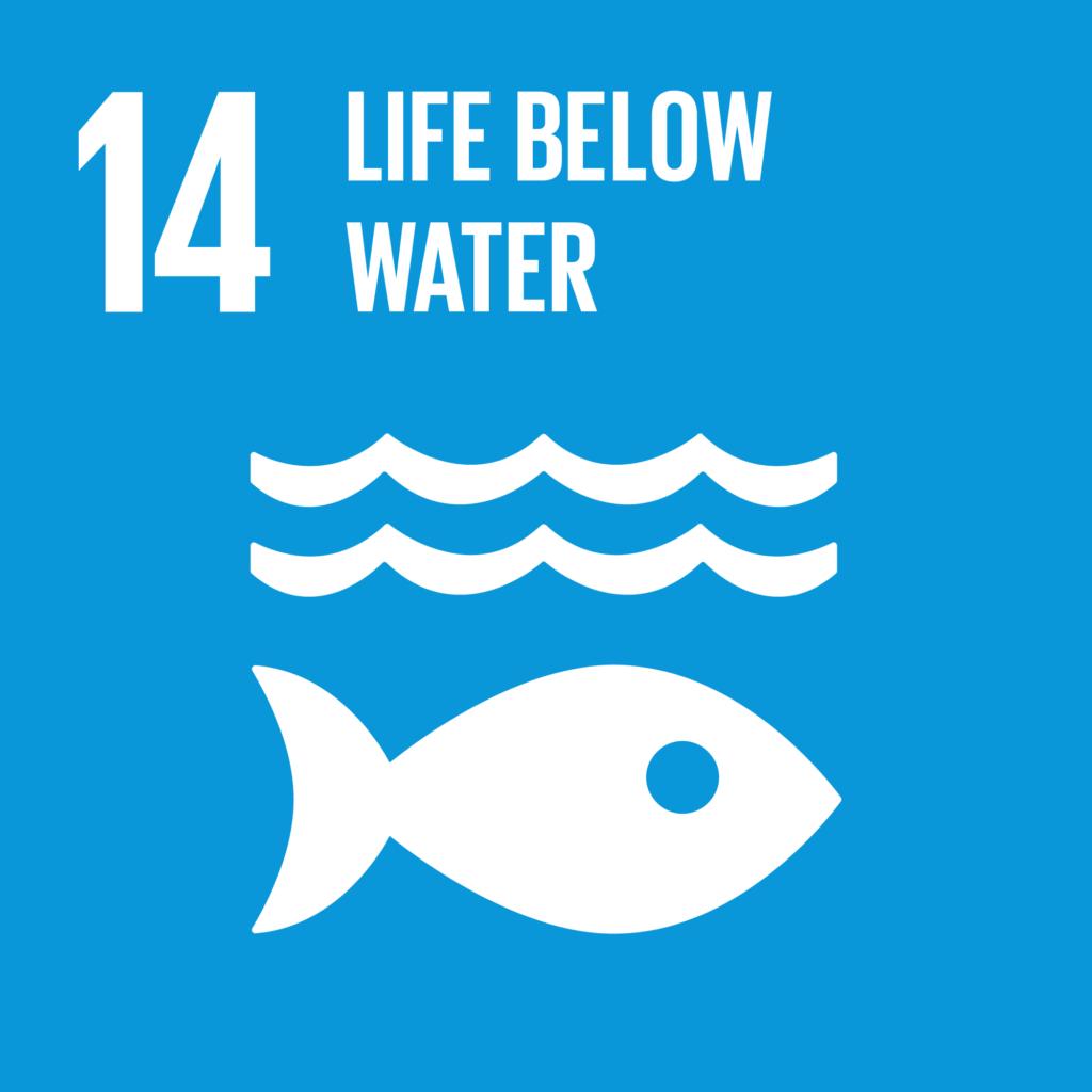 SDGs(持続可能な開発目標) ゴール14 海の豊かさを守ろう